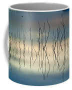 Acuatic Graphics Coffee Mug
