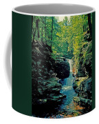 Adams Falls Coffee Mug