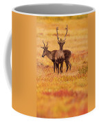 Adult Caribou In The Fall Colours Coffee Mug