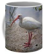 Adult White Ibis Coffee Mug