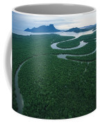 Aerial View Of The Salak River. Mount Coffee Mug
