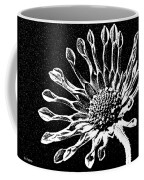 African Daisy In Black And White Coffee Mug