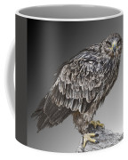 African Tawny Eagle Coffee Mug