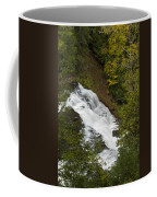 Agate Falls 1 Coffee Mug