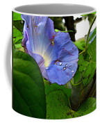 Aging Morning Glory Coffee Mug