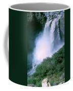 Agoyan Falls Coffee Mug