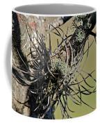 Air Plant Coffee Mug