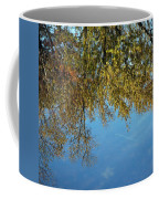 Airplane Reflections Coffee Mug