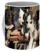 Alaskan Huskey Puppies Coffee Mug