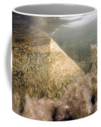 Algae In A Frozen Pond Coffee Mug by Ted Kinsman