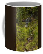 Alger Falls 1 Coffee Mug