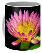 Alive With Color Coffee Mug