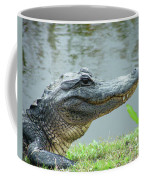 Alligator Cameron Prairie Nwr La Coffee Mug
