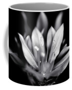 Allium Mono Coffee Mug