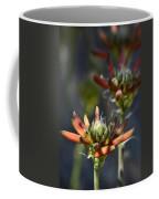 Aloe Vera Blossoms  Coffee Mug