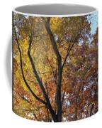 Along The River Coffee Mug