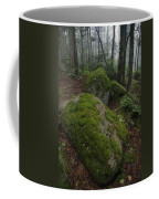 Along The Russell Pond Trail, A Young Coffee Mug