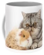Alpaca Guinea Pig And Silver Tabby Cat Coffee Mug