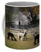 Alpacas In Vermont Coffee Mug