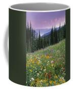 Alpine Wildflower Meadow, Mount Coffee Mug