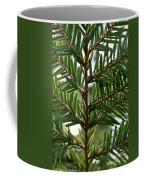 Alternate Pinnate Coffee Mug