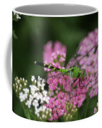Always Stop To Smell The Flowers Coffee Mug