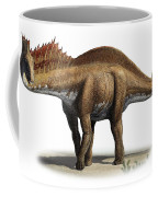 Amargasaurus Cazaui, A Prehistoric Era Coffee Mug