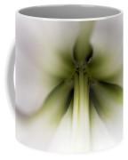 Amaryllis Hippeastrum Sp Flower Coffee Mug