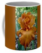 Amber Iris Coffee Mug