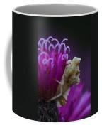 Ambush Bug On Tall Ironweed Coffee Mug