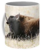 American Bison 2 Coffee Mug