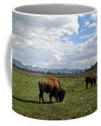 American Buffalo 10 Coffee Mug