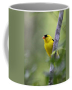 American Goldfinch - Peaceful Coffee Mug