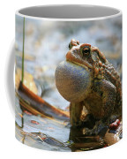 American Toad Croaking Coffee Mug