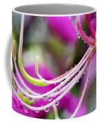 Amherstia Nobilis 3 Coffee Mug