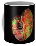 Ammonite Fossil Coffee Mug