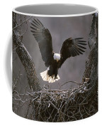 An American Bald Eagle Flies Coffee Mug