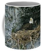 An American Bald Eagle Perches Coffee Mug
