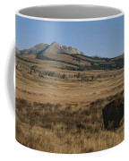 An American Bison Standing Coffee Mug