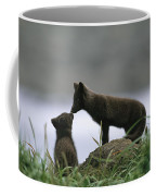 An Arctic Fox And Her Kit.  The Foxes Coffee Mug