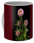 An Aster Flower Aster Ericoides Coffee Mug