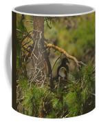 An Eagle And Young Coffee Mug