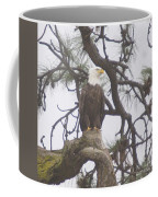 An Eagle Perched  Coffee Mug