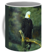 An Eagle Staring Coffee Mug