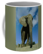 An Elephant At The Pittsburgh Zoo. This Coffee Mug by Michael Nichols