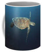 An Endangered Green Sea Turtle Swimming Coffee Mug