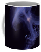 An Iridescent Blue Southern Tailed Coffee Mug by Jason Edwards