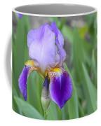 An Iris Blossom Coffee Mug