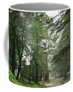 An Old Gothic Style Church In The Indian City Of Mcleodganj Coffee Mug