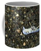 An Opisthobranch On Volcanic Sand Coffee Mug